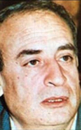 Hayel Abdel-Hamid